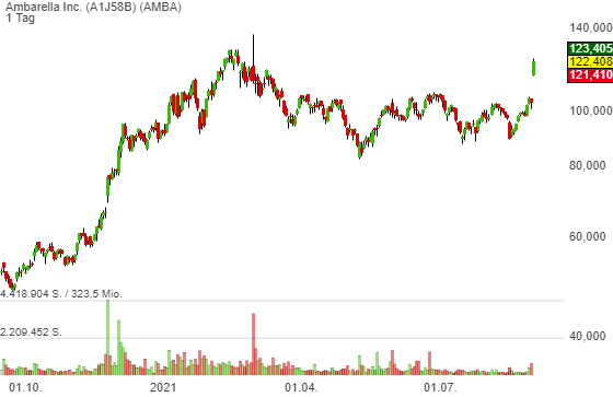 Ambarella Inc. (18,24%)