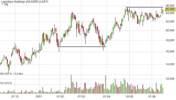 Lazydays Holdings (3,38%)