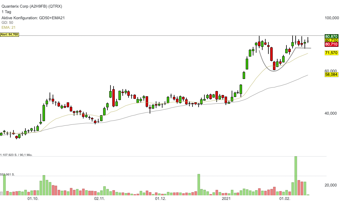 Quanterix Corp (1,55%)