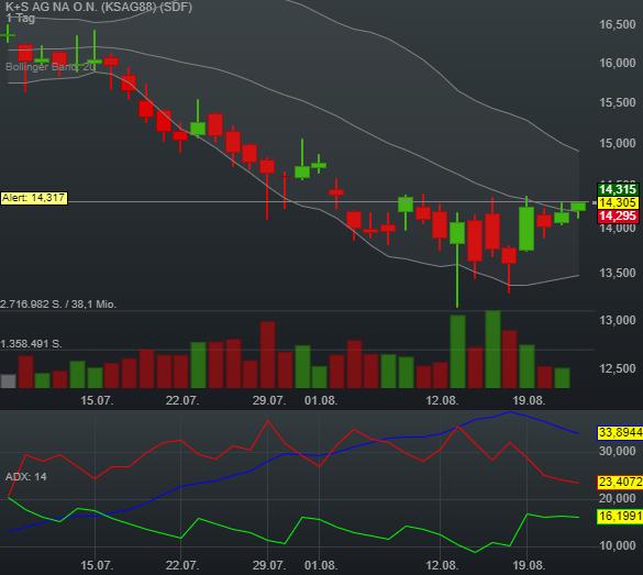 K+S AG NA O.N. (0,77%)