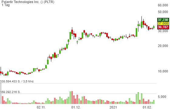 Palantir Technologies Inc. (8,69%)