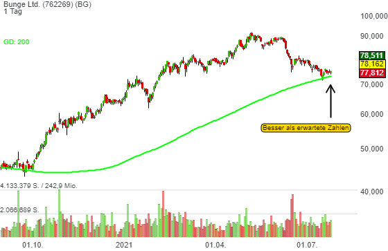 Bunge Ltd. (3,94%)