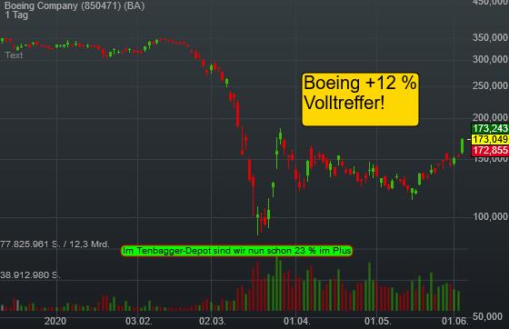 Boeing Company (12,88%)
