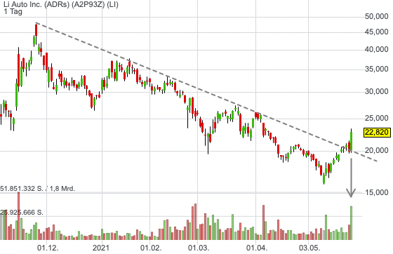 Li Auto Inc. (ADRs) (14,16%)
