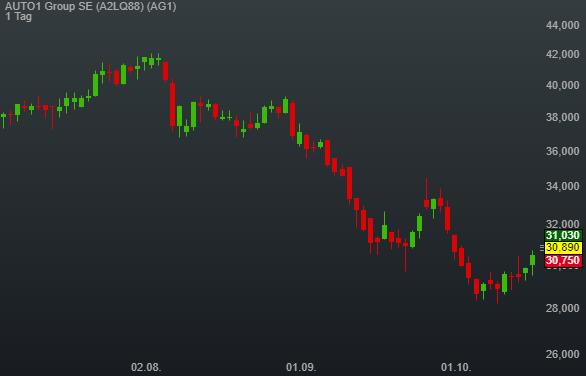 AUTO1 Group SE (1,31%)
