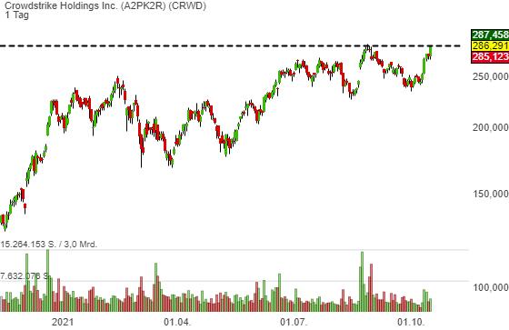 Crowdstrike Holdings Inc. (0,33%)