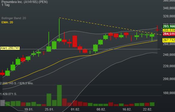 Penumbra Inc. (3,03%)