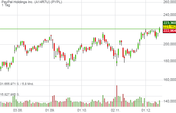 PayPal Holdings Inc. (1,07%)