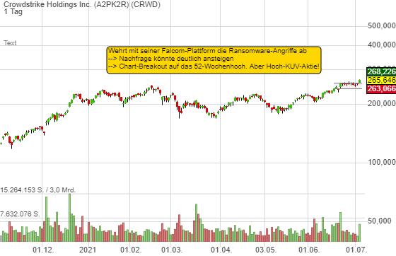 Crowdstrike Holdings Inc. (0,22%)