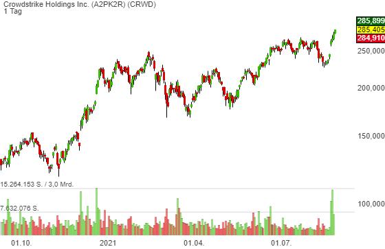 Crowdstrike Holdings Inc. (2,38%)